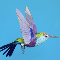 Un boa constrictor et un oiseau multicolore